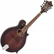 VPMF1 NEW WORLD MANDOLIN - F STYLE, OVAL HOLE